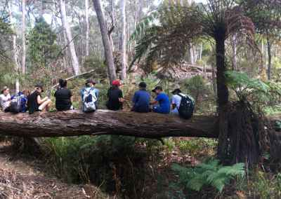 jodi's pano kids on log checpoint 9 charnwood