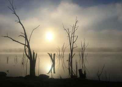 jarod nillah sunrise - nillahcootie