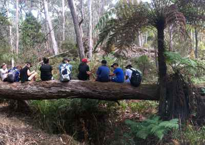 jodi's pano kids on log checpoint 9 charnwood - charwood gallery